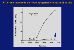 A screen shot from Dr. Lustig's presentation — fat storage from fructose vs. glucose.